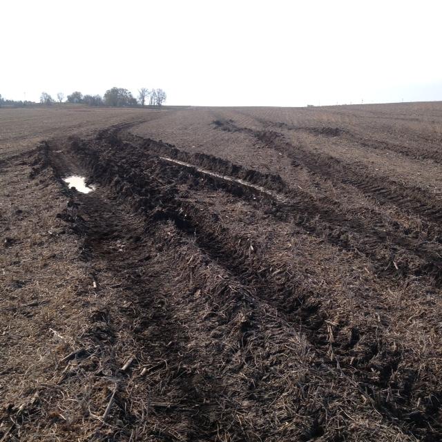 wet-soil